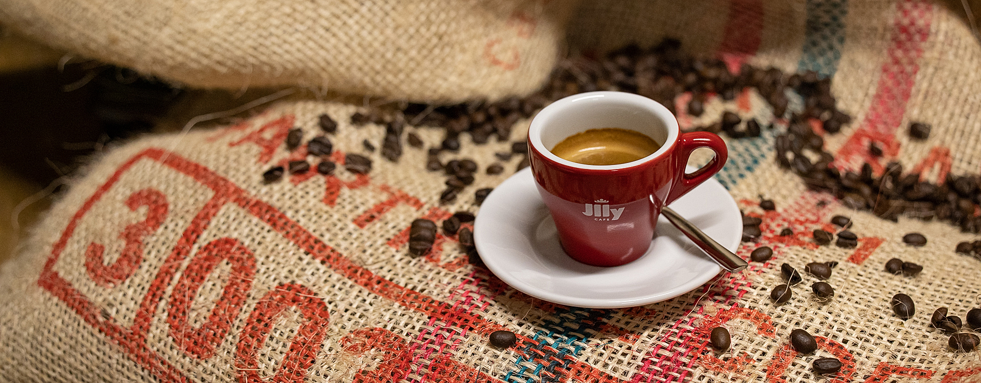Fundiertes Kaffeewissen mit Illycafé.